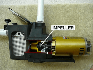 Troubleshoot Your Noisy Pool Pump in 3 Easy DIY Ways